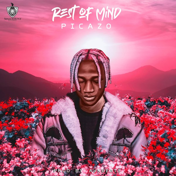 Picazo - Rest Of Mind