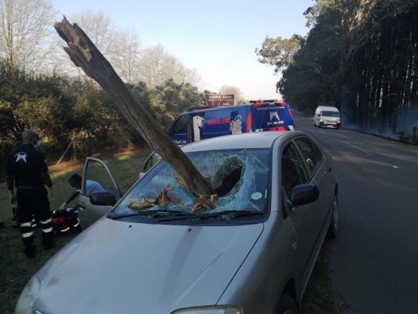 Driver escapes death as branch from burning tree smashes into car windscreen