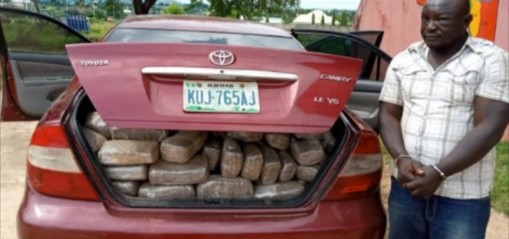 NDLEA arrest dismissed official with 254kg of weed in Niger state