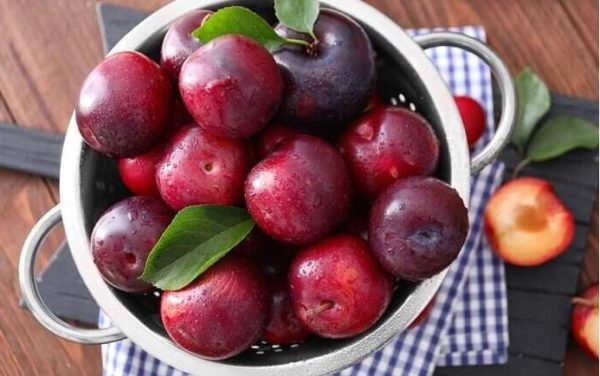 8 wonderful health benefits of Plums fruits