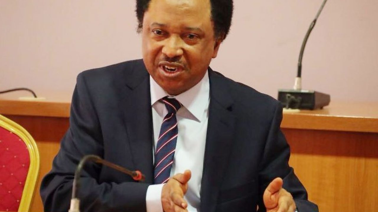 Shehu Sani Reacts To Hisbah's Call For Scrapping Of 'Black Friday'