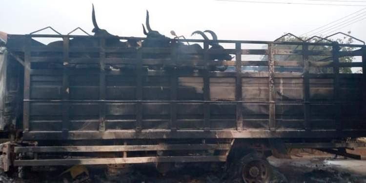 PHOTOS: Youths burn truck, cattles after a boy was crushed in Oyo