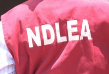 Recruitment: NDLEA releases list of successful candidates (How to check)