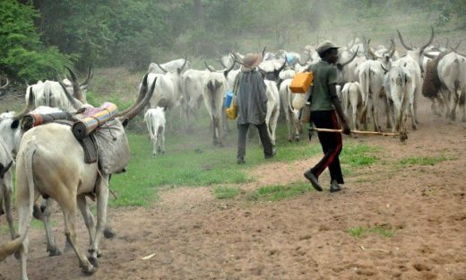 Southern governors urged to be patient with herders