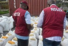 NDLEA recovers cocaine, heroine from Anambra monarch's palace (VIDEO)