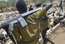 Suspected herdsmen kidnap three persons, injure another in fresh attacks in Ibarapa
