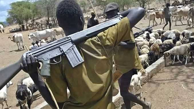 Fulani terrorists displaced 55 Plateau communities, renovated houses, living in them -Federal Lawmaker