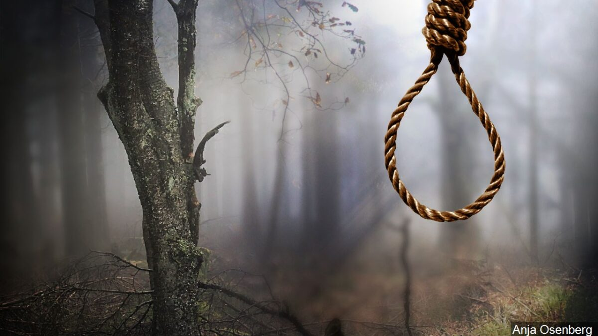 Unidentified man commits suicide by hanging himself on a tree in Ibadan