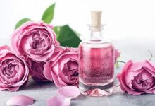 5 beauty benefits of rose water