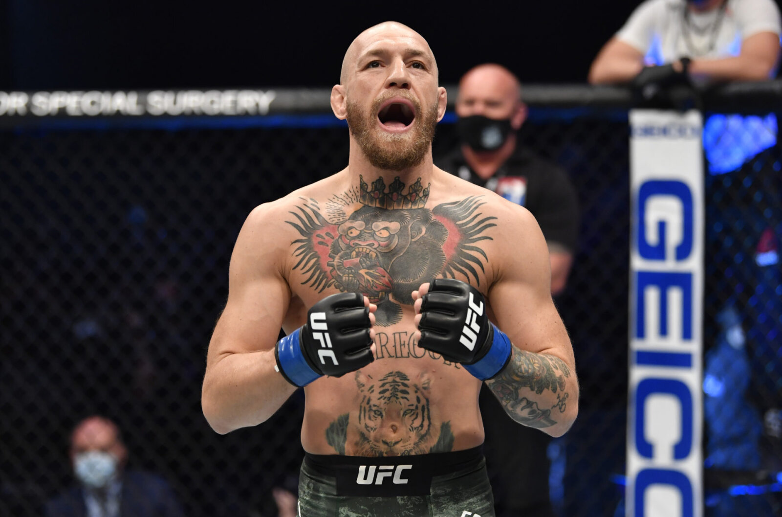 Where Does Conor McGregor Come From? Nationality, Ethnicity and Religion