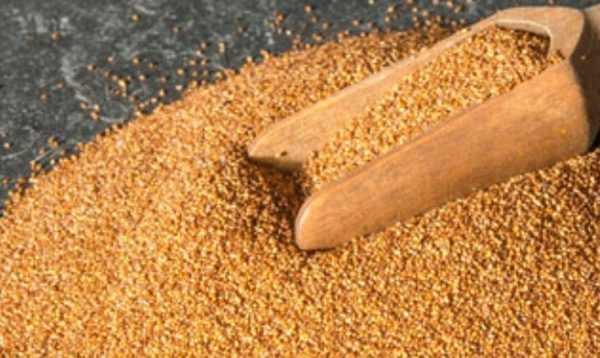 5 healthy reasons why teff seeds should be added in your daily diet
