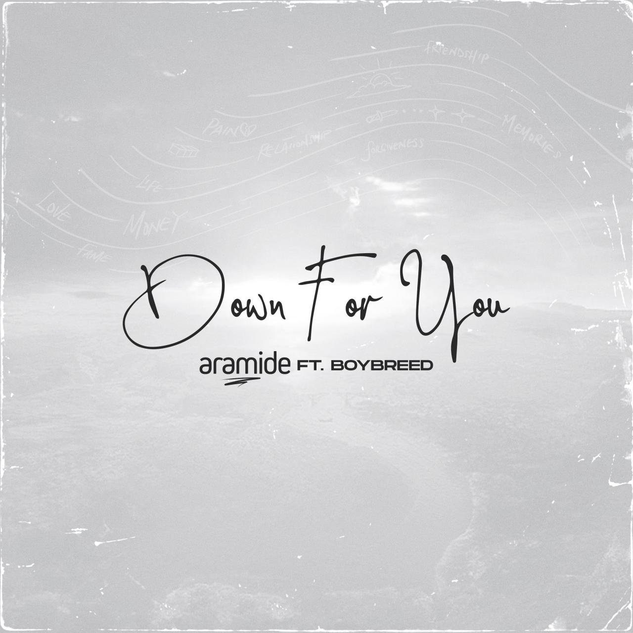 Aramide Ft. Boybreed - Down for You