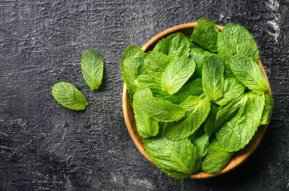 5 unknown benefits of mint in skincare