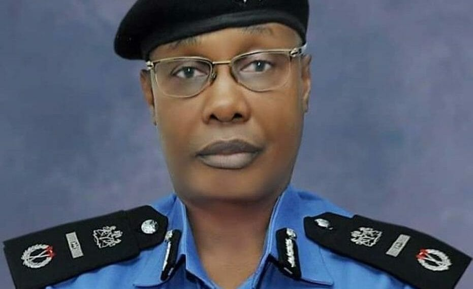 I want to leave a legacy of professionalised police, says IGP Usman Alkali