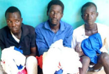 Three arrested over 'midnight house to house robberies' in Adamawa