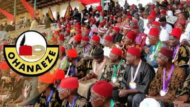 'Sit-at-home is nonsense' – Ohanaeze worldwide asks IPOB to take protest to Abuja